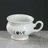 "Столовый набор ""Бостон-терьер"" тарелка d175 мм, салатник 0,5 л, чашка 0,2 л   микс, фото 5"