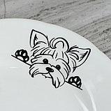"Столовый набор ""Бостон-терьер"" тарелка d175 мм, салатник 0,5 л, чашка 0,2 л   микс, фото 6"