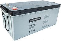 Аккумуляторная батарея CHALLENGER A12-225