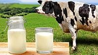 Комплект оборудования для приемки и первичной обработки молока 6000 л/сутки