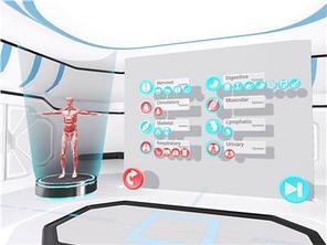 Анатомия  VR