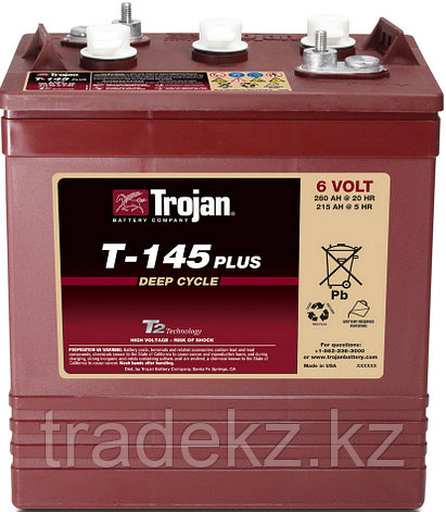 Аккумуляторная батарея TROJAN T145+, фото 2