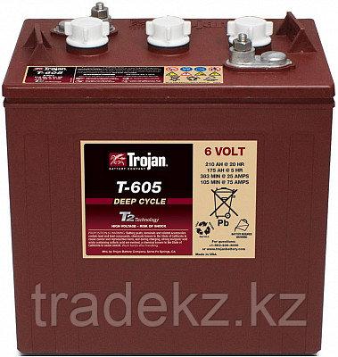 Аккумуляторная батарея TROJAN T605, фото 2