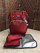 Сумка/рюкзак  Chicco