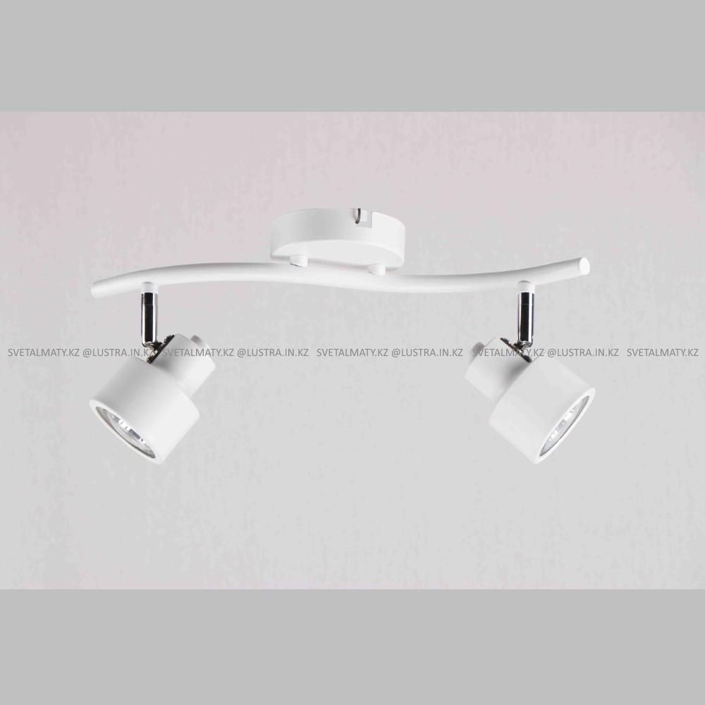 Универсальный потолочно-настенный спот в стиле Модерн на 2 лампочки