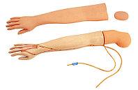Полнофункциональная модель руки для внутривенных инъекций (взрослая) General Doctor