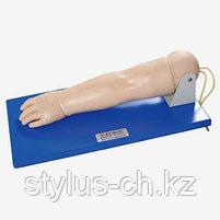 Модель руки пятилетнего ребенка для отработки навыков различных инъекций, General Doctor в НАЛИЧИИ, фото 2