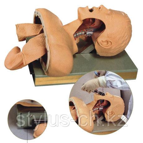 Электрическая модель для интубации трахеи, с набором ларингоскопа и мешком «Амбу» для взрослых, и детей, GD