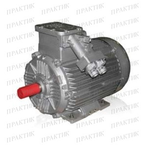 Электродвигатель рудничный ВРА 160M6
