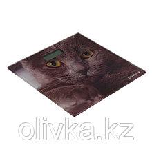 """Весы напольные Sakura SA-5065CT, электронные, до 180 кг, картинка """"кошка"""""""