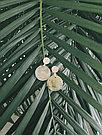 Серебряные серьги с натуральными камнями Brosh Jewellery (Серебро 925) (черный Оникс), фото 2