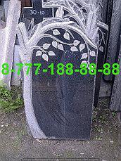 Памятники с деревьями ДЕ 26-30, фото 2