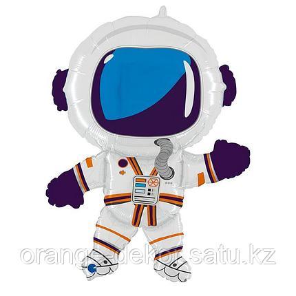 Астронавт, фото 2