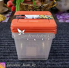 """Набор емкостей с крышками, для хранения продуктов """"Plast Team"""". Материал: Пластик. Цвет: Прозрачный/Красный."""