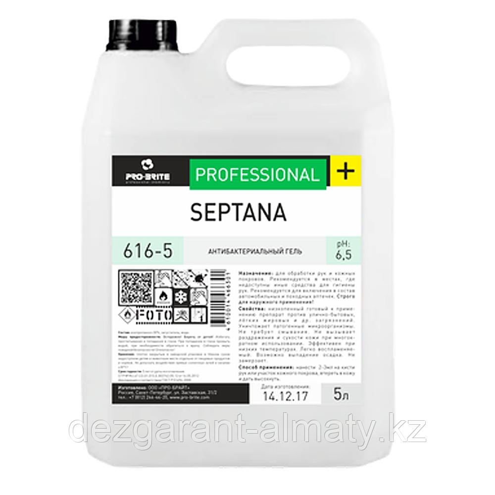 Антибактериальный гель SEPTANA 5л