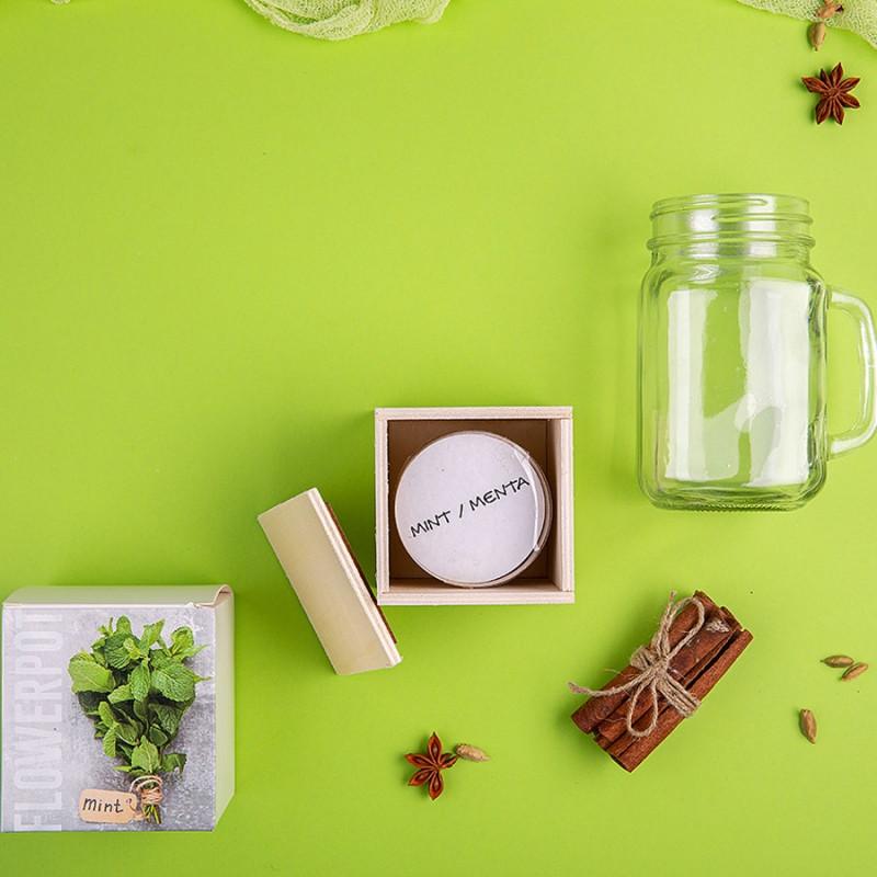 Набор подарочный PARTYMAKER: кружка-банка, горшочек для выращивания мяты, коробка, стружка, прозрачный,
