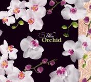 """Пакет (мешок) петля ПВД 44х44см, 60мкм, """"Белая орхидея"""" лам., 25 шт, фото 2"""