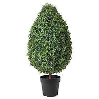 Искусственное растение в горшке, ВИНТЕРФЕСТ /дома/улицы самшит,  ИКЕА, IKEA, фото 1