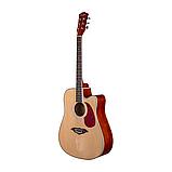 Гитара KN-41 NT, фото 2