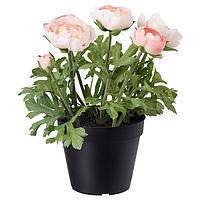 Искусственное растение ФЕЙКА  д/дома/улицы, лютик розовый, 12 см ИКЕА, IKEA, фото 1