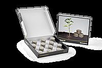 Биотаблетки для комнатных растений 12 ШТ. (B.A.C.)