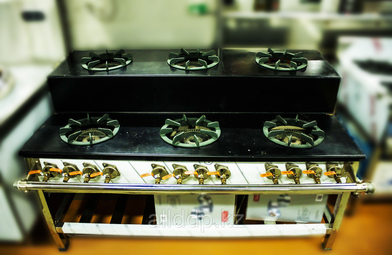Большая газовая промышленная плита (6 конфорок, 2 круга пламени)