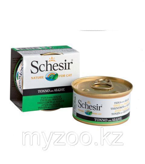 Schesir Шезир  банка  для кошек ТУНЕЦ-МОРСКИЕ ВОДРОСЛИ в желе   85 гр