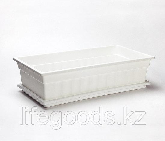 Ящик для рассады и цветов с поддоном «Домашняя грядка» белый, фото 2