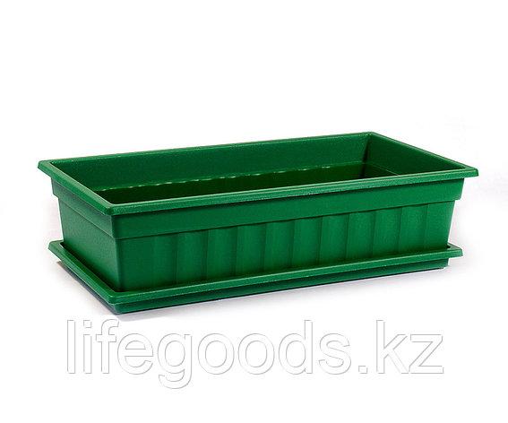 Ящик для рассады и цветов с поддоном «Домашняя грядка» темно-зеленый, фото 2