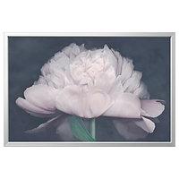 Картина с рамой БЬЁРКСТА Цветок 118x78 см