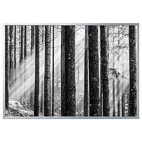 Картина с рамой БЬЁРКСТА Солнечные лучи 200x140 см ИКЕА