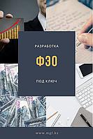 Разработка ФЭО (Финансово-экономическое обоснование)