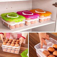 Контейнер для хранения яиц 24 шт. салатовый, фото 3