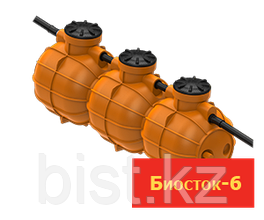 Биосток 6