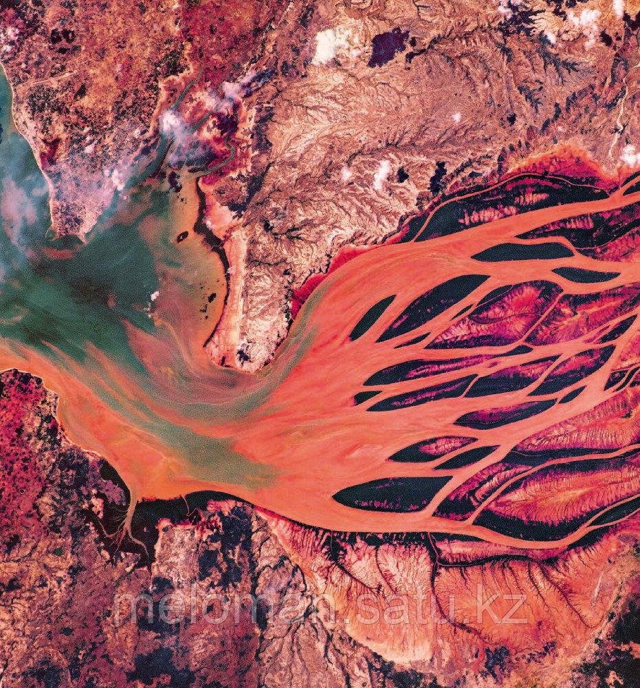 Рязанский С. Н.: Удивительная Земля. Планета тысячи цветов - фото 5