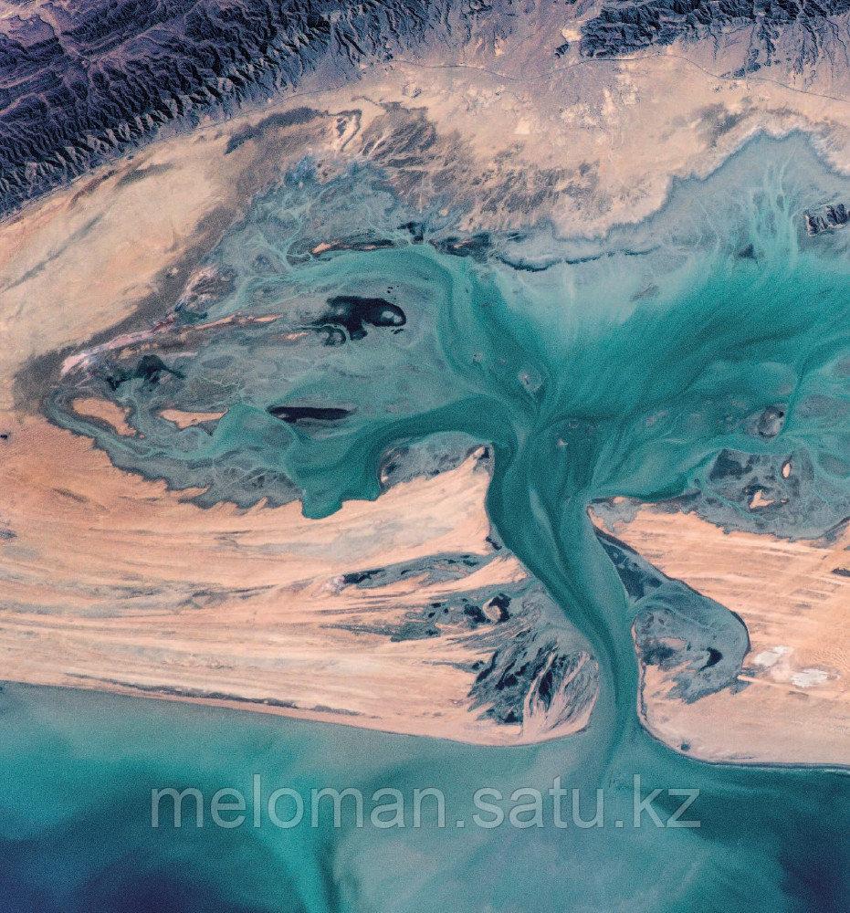 Рязанский С. Н.: Удивительная Земля. Планета тысячи цветов - фото 7