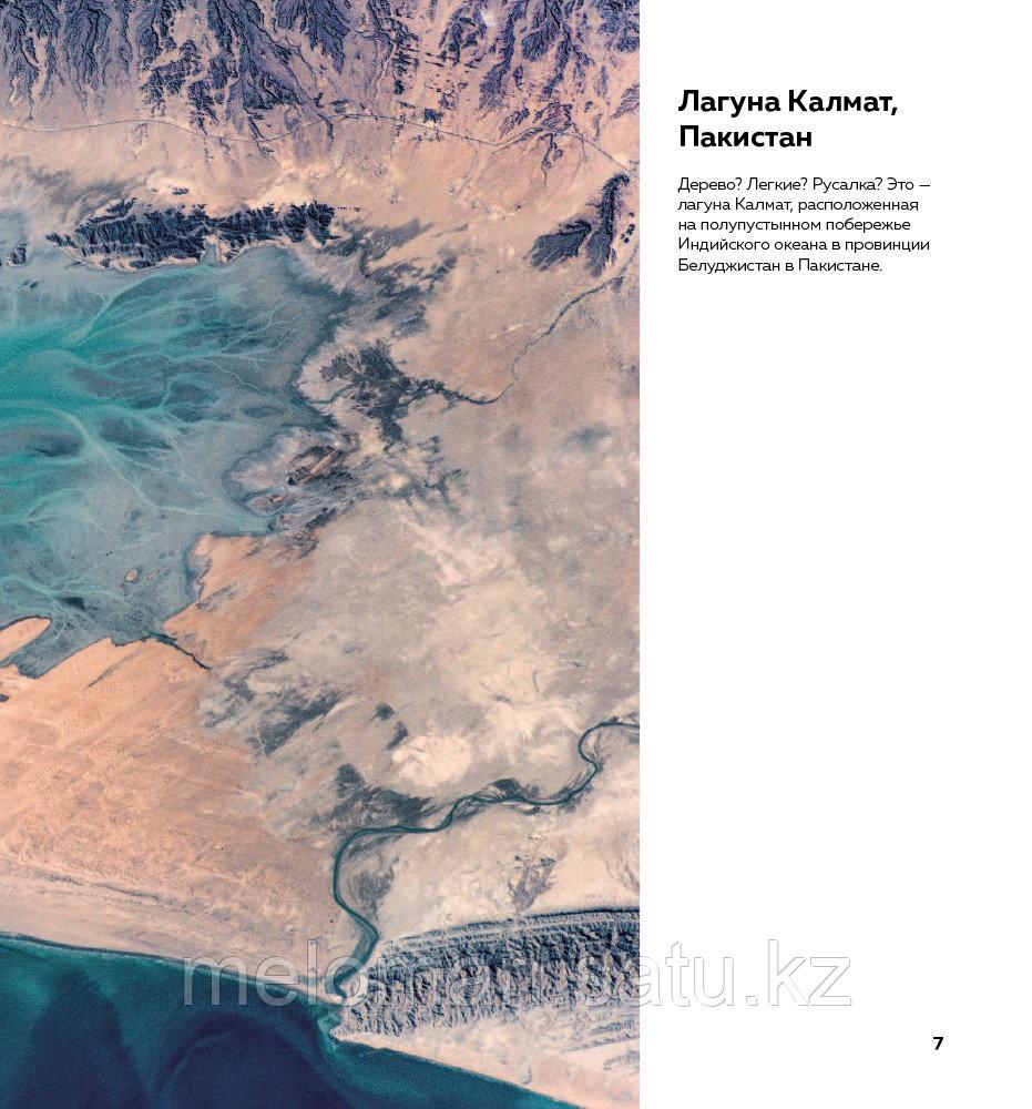 Рязанский С. Н.: Удивительная Земля. Планета тысячи цветов - фото 8