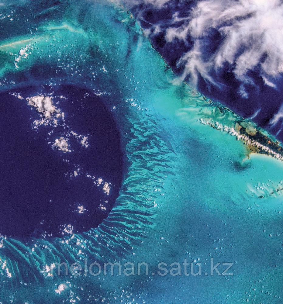 Рязанский С. Н.: Удивительная Земля. Планета тысячи цветов - фото 10