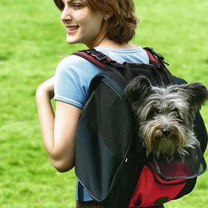 сумки и контейнеры для переноса домашних животных
