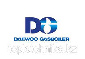 Газовый котел Daewoo DGB-160 MSC