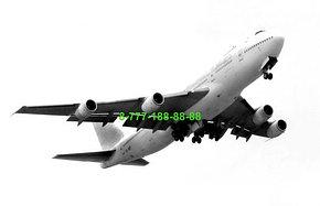 Перевозка тела умершего самолетом, фото 2