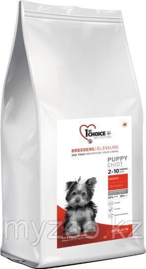 1st Choice Puppy Toy and Small breeds (Фест Чойс) корм для щенков миниатюрных и мелких пород 20 кг
