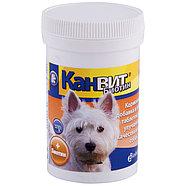 CANVIT Biotin ,Канвит Биотин ,витамины для собак 100гр, фото 2