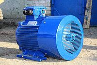 Электродвигатель АИР 200 L4 45кВт 1500об/мин 380/660 У1 IM1001