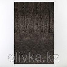 """Фотофон """"Темные доски"""", винил 80х125 см"""