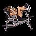 Скамья горизонтальная для тренировки мышц брюшного пресса Body-Solid GAB100 на свободных весах, фото 3