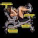 Скамья горизонтальная для тренировки мышц брюшного пресса Body-Solid GAB100 на свободных весах, фото 4