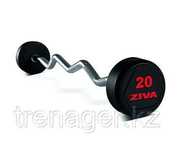 Набор из 10 обрезиненных фиксированных EZ штанг 10-45 кг (шаг 2,5 кг)