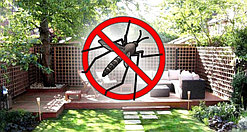 Уничтожение комаров на даче и участке