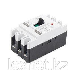 Автоматический выключатель iPower ВА55-63 3P 16A, фото 2